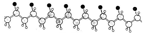 Isotactic Polypropylene Molecular Image