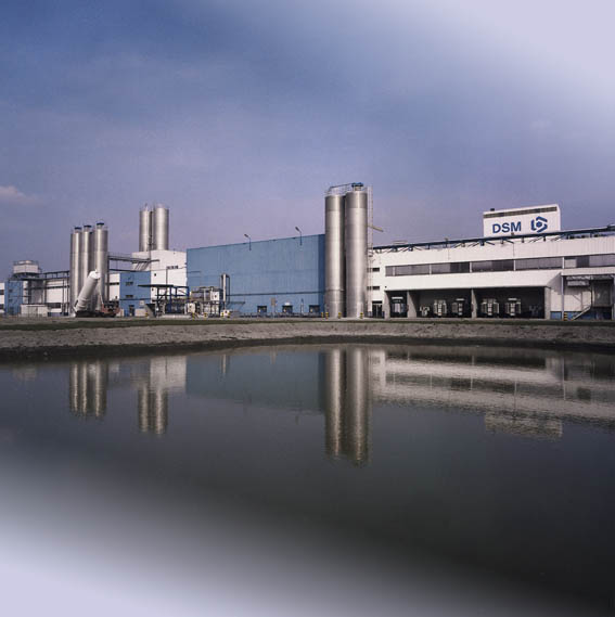 DSM factory